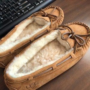UGG Dakota Chestnut Slipper Size 8